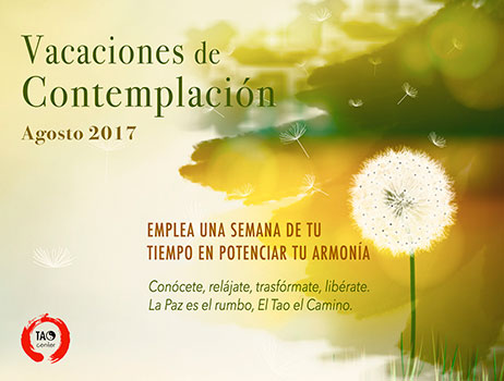 vacaciones taoistas 2017, Tao Center