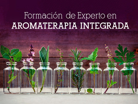 formación experto en aromaterapia integrada
